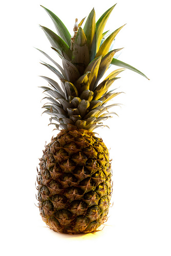 THE PINEAPPLE PROJECT Saturday, May 12,10:00 am at MUUC. A play for kids 3-8 and their grown-ups